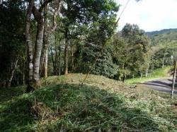 Mountain Lot in La Rioca Sub Division