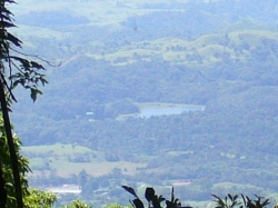 30 hectares of beautiful forest where the quetzal lives - dramatically reduced price!