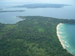 Bocas Fruit Forest and Botanical Gardens; 24.6 HA of titled land, with ocean and beach access designed by a permaculture expert
