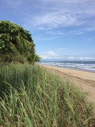 Titled beach lot in Las Lajas, the most beautiful beach in Chiriqu�