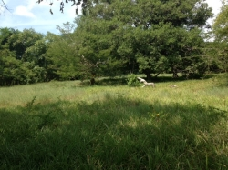 Great Development or Land Banking Oportunity consisting of 6.9 -11 HA Land for sale in Chitr�, near the Los Guyacanes Hotel