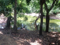 Lot located on a river in front of a natural swimming hole, and near surfing for an excellent price!