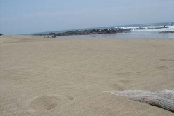 Beach Front Development Property in Pedasi with 42 hectares