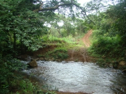 10 acres of titled Farm and Cattle land, 1.25 hours north of Santiago City, Veraguas