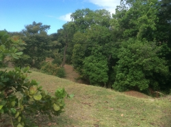 Large Building Lot in Costa Esmeralda