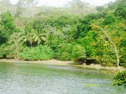 Ocean lots on Boca Brava island