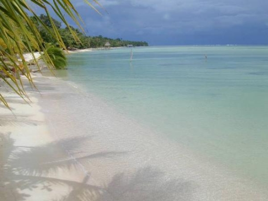 Beaches of Bocas del Toro
